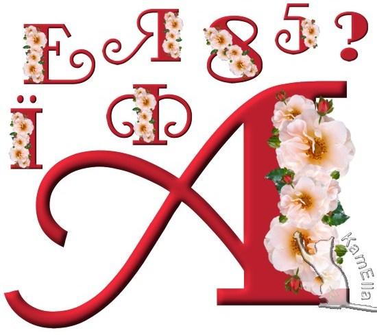 Український алфавіт з білим цвітом
