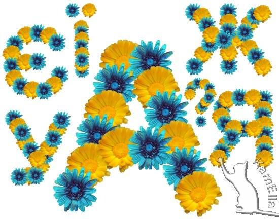 Український алфавіт з жовто-синіх квітів