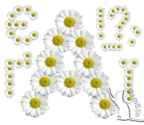 Український алфавіт з ромашок