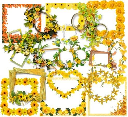 Рамочки з жовтими квітами