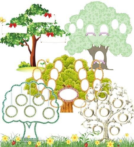 Дерево роду png